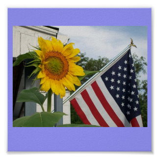 Sunflower with Flag Poster