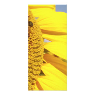 Sunflower with Honey Bees Rack Card