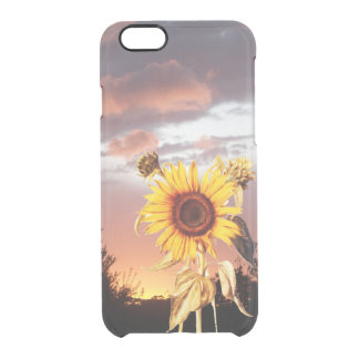 SUNFLOWER WITH SUMMER SUNSET CLEAR iPhone 6/6S CASE