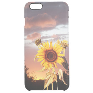 SUNFLOWER WITH SUMMER SUNSET CLEAR iPhone 6 PLUS CASE