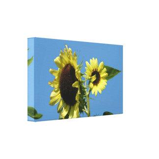 Sunflower Wrapped Canvas Horizontal Canvas Prints