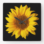 Sunflower Yellow on Black - Customized Sun Flowers Square Wall Clock