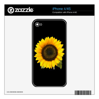Sunflower Zazzle Skin Decals For iPhone 4