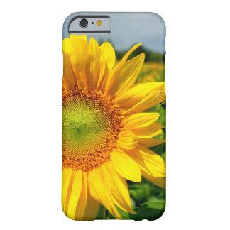 SunfloweriPhone 6 Ca