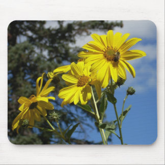 sunflowernbumblebee mouse pad