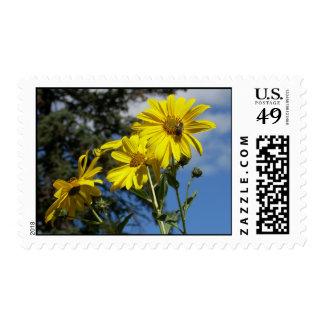 sunflowernbumblebee postage stamp