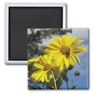 sunflowernbumblebee refrigerator magnet