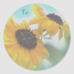 sunflowers 1 gift tags round stickers