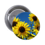 Sunflowers 2 Inch Round Button