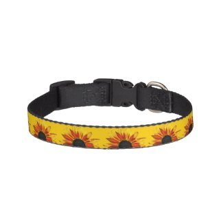 Sunflowers Abstract Pet Collar