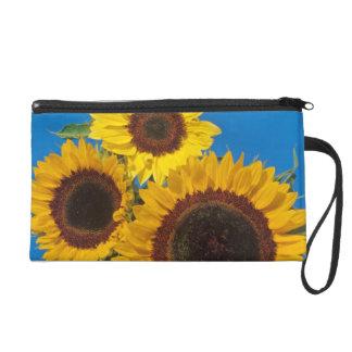 Sunflowers against blue fence wristlet purse