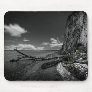 Sunflowers along the Missouri River Mouse Pad