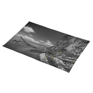 Sunflowers along the Missouri River Cloth Placemat