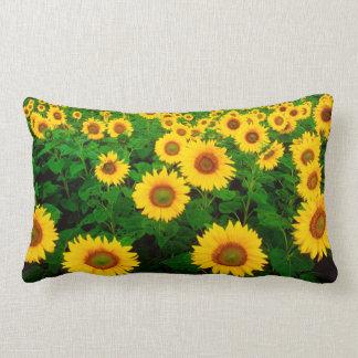 'Sunflowers' American Mojo Lumbar Throw Pillow