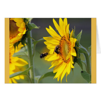 Sunflowers and Bees Birthday Card