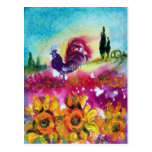 SUNFLOWERS AND BLACK ROOSTER POST CARDS