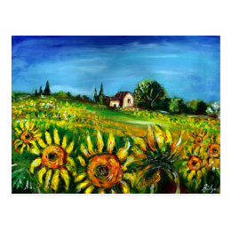 SUNFLOWERS AND COUNTRYSIDE IN TUSCANY POSTCARD