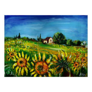 SUNFLOWERS AND COUNTRYSIDE IN TUSCANY POSTER