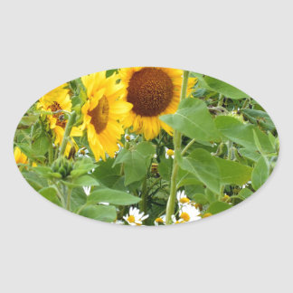 Sunflowers and Daisies Sticker