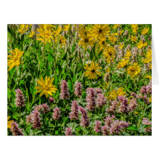 Sunflowers and Horsemint - Wildflowers - Summer Greeting Cards