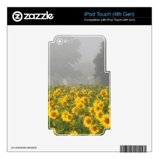 Sunflowers and Mist Skins For iPod Touch 4G