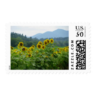 Sunflowers and Mountains Stamps