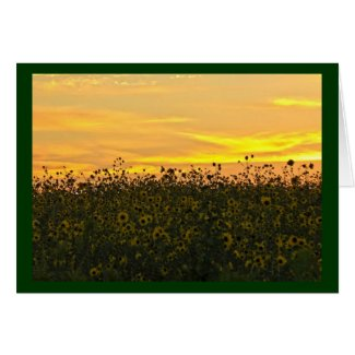 Sunflowers at Dusk Card