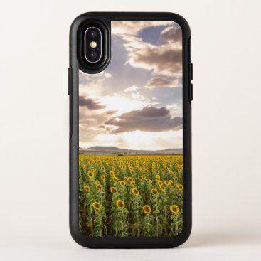 Sunflowers at Sunset OtterBox Symmetry iPhone X Case