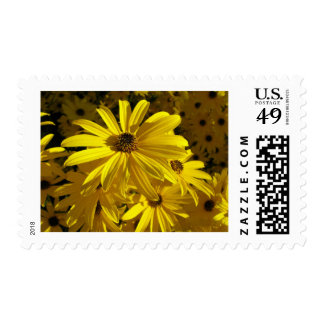 Sunflowers at the Zoo Postage Stamp