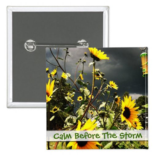 Sunflowers Before The Storm Clouds Photograph Pinback Button