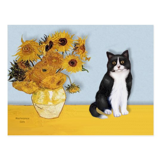 Sunflowers - Black and white cat Postcard