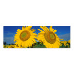 Sunflowers Business Card