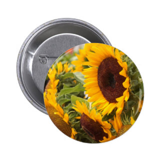 Sunflowers Pinback Buttons