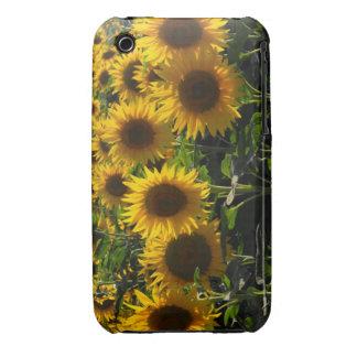sunflowers Case-Mate iPhone 3 cases
