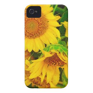 Sunflowers City Market KC Farmer's Market Case-Mate iPhone 4 Cases