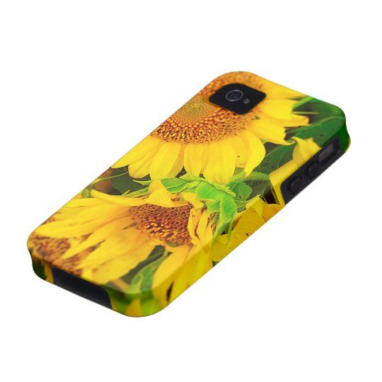 Sunflowers City Market KC Farmer's Market iPhone 4 Cover