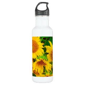 Sunflowers City Market KC Farmer's Market Stainless Steel Water Bottle