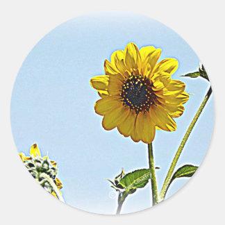 Sunflowers Classic Round Sticker