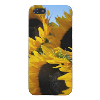 Sunflowers Cover For iPhone SE/5/5s