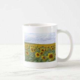 Sunflowers field - champ de tournesols - girasol coffee mug