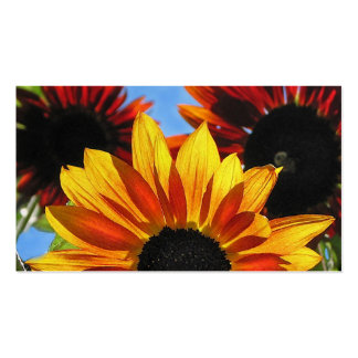Sunflowers Floral Business Card