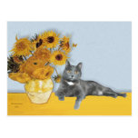 Sunflowers - Grey cat Postcard