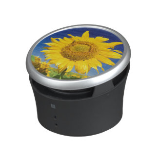 Sunflowers (Helianthus Annuus), Near Senekal Bluetooth Speaker