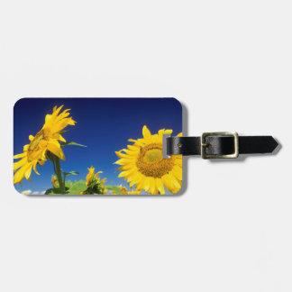 Sunflowers Helianthus Annuus Near Senekal Travel Bag Tags