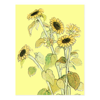 Sunflowers Illustration by Kate Greenaway Postcard