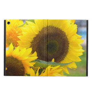 Sunflowers in Bloom iPad Air Case