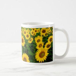 Sunflowers in Fargo North Dakota Coffee Mug