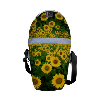 Sunflowers in Fargo north Dakota Courier Bags