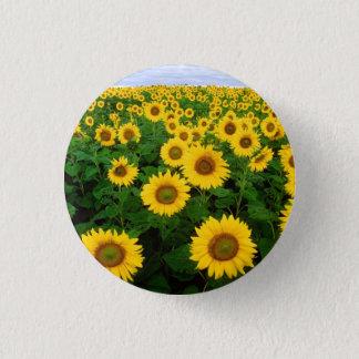 Sunflowers in Fargo, North Dakota Pinback Button
