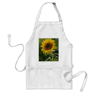 Sunflowers In Field Adult Apron